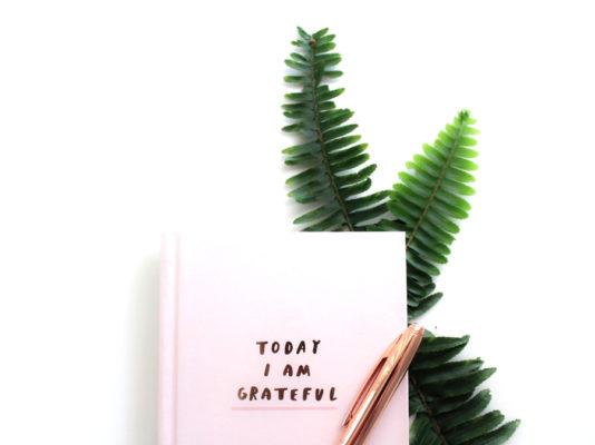 Comment introduire la gratitude dans son quotidien